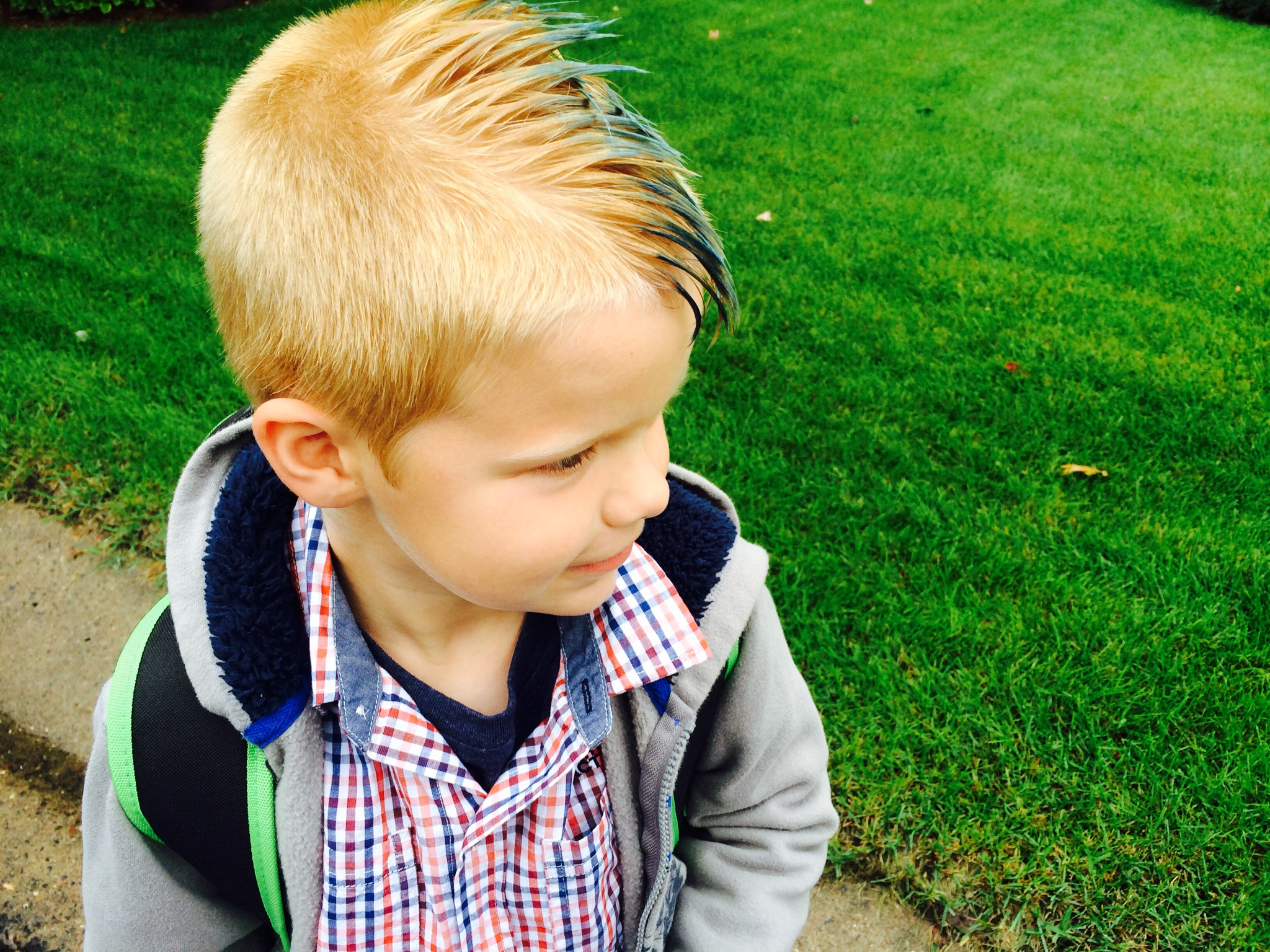 A Mohawk to Picture Day
