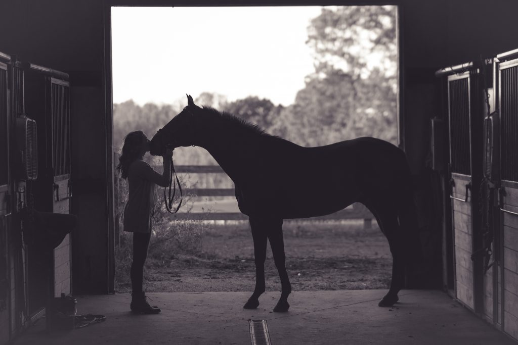 woman and horse face to face in barn